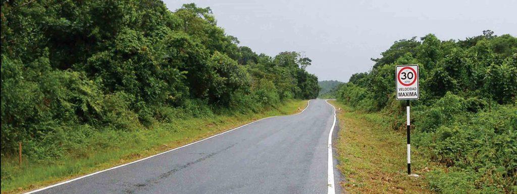Carretera Amazonas-Foto del Ministerio